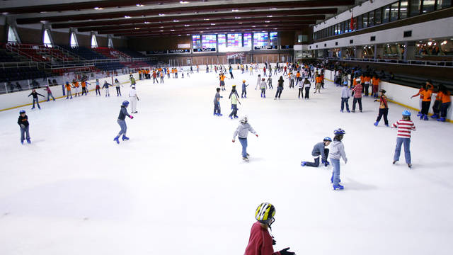 view of the  Ice Skating Rink
