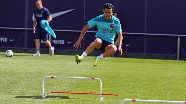 Pedro, sedang melompat palang rintangan