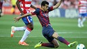 Pedro in action against Granada last season / PHOTO: MIGUEL RUIZ - FCB